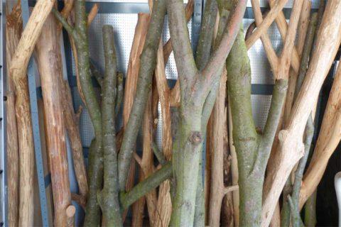 kratzb ume aus naturholz der weg vom stamm zum kratzbaum naturholzkratzb ume. Black Bedroom Furniture Sets. Home Design Ideas