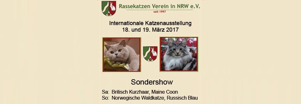 Ausstellung im März 2017 – RuhrstadtARENA Herne